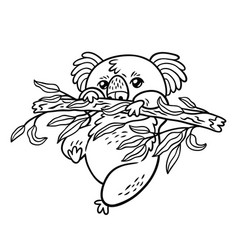 hand drawing koala in cartoon style animal vector image
