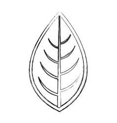 Leaf plant seasonal icon vector
