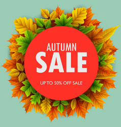 red round frame with autumn leaves sales vector image