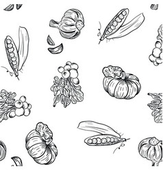 Vegetable pattern hand drawing in doodle style on vector