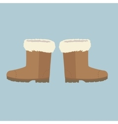 Winter Shoes Felt Boots vector image