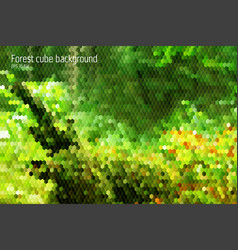 Forest geometrical backgorund with 3d hexagon and vector