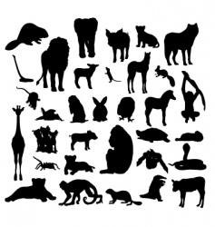 animals white background 23 vector image