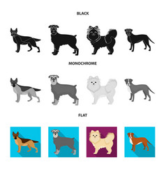 Dog breeds black flat monochrome icons in set vector