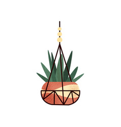 hanging potted green house plant element for vector image