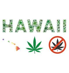 Hawaii text mosaic of marijuana vector