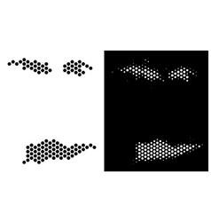 Usa virgin islands map hexagon mosaic vector