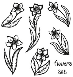 Floral doodling flowers set in tattoo style vector image