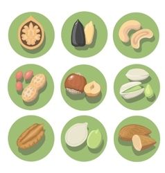 Nuts icon set peanut cashew pistachio and vector image