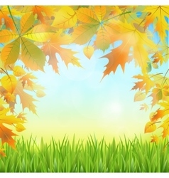 Autumn leaves on the abstract background vector