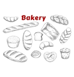 Bakery sketches with bread and pastry vector