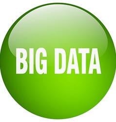 Big data green round gel isolated push button vector