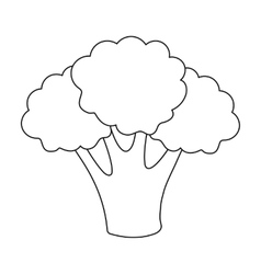 Broccoli icon outline Singe vegetables icon from vector image