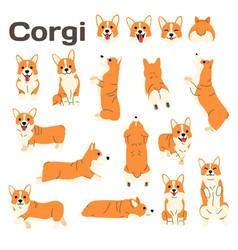 Corgidog in action happy dog vector
