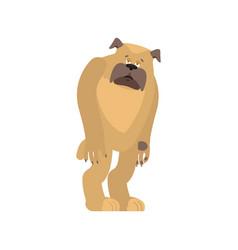 Dog sad pet sorrowful emotions bulldog dull vector