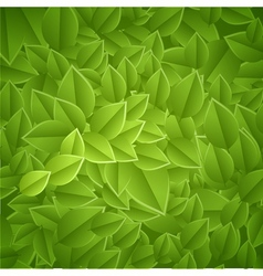 Leaves-texture vector