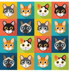 Pattern of cute cats vector