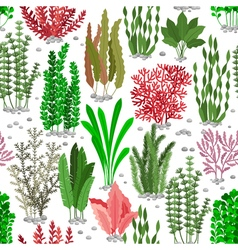 Seaweed seamless pattern Sea weed fur background vector