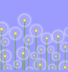 Spring dandelion pattern vector