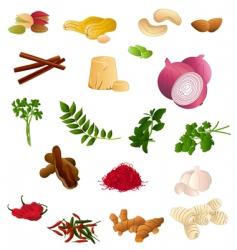 indian produce vector image