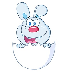 Surprise Blue Bunny Peeking Out Of An Easter Egg vector image vector image