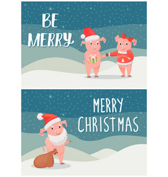 be merry wishes on christmas male female piglets vector image