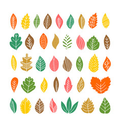 elegant and beautiful autumn leaves and elements vector image