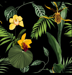 exotic flowers seamless pattern vector image