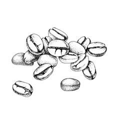 hand drawn coffee beans heap vector image