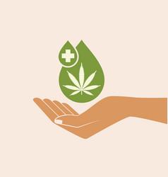 Hand holding oil drop with a marijuana leaf vector