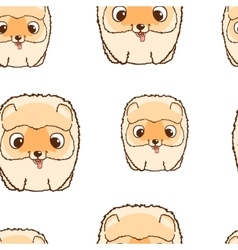 Seamless pattern with pomeranian puppies Colorful vector image