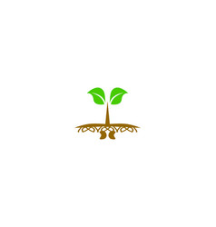 seed sprout logo vector image