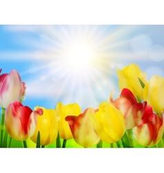 Tulips growing in garden on green eps 10 vector
