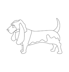 Basset hound linear style vector image