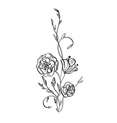 hand drawn wild rose flowers drawing and vector image