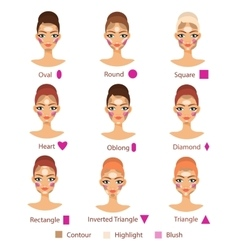 Highlight contour and blush for different female vector image