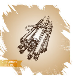 Silhouettes cinnamon sticks hand drawn vector