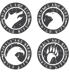 vintage grunge labels with animals and birds vector image