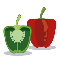 red and green pepper ingredients vector image