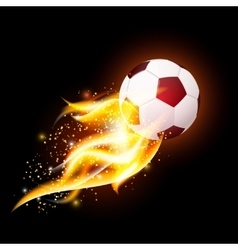Football Ball With Fire vector image vector image