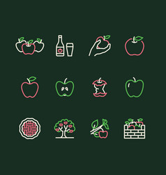 Apples flat line icons apple picking autumn vector