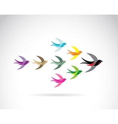Bird swallow vector