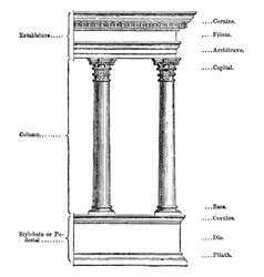 Elements of an architectural order pilinth vector