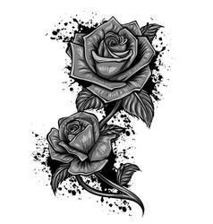 monochromatic image roses in retro style vector image