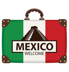 suitcase with the flag of mexico vector image