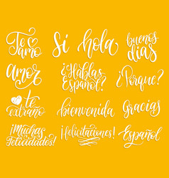 translated from spanish handwritten phrases vector image