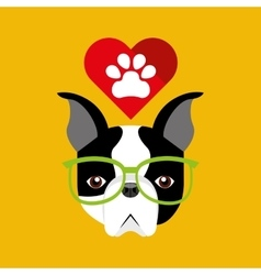 Cute dog pet with paw heart background vector