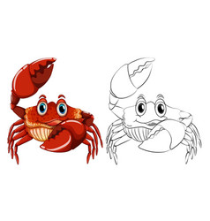 Animal outline for crab vector