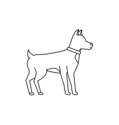 dog pet icon image vector image