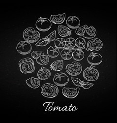 hand drawn tomato icons set vector image